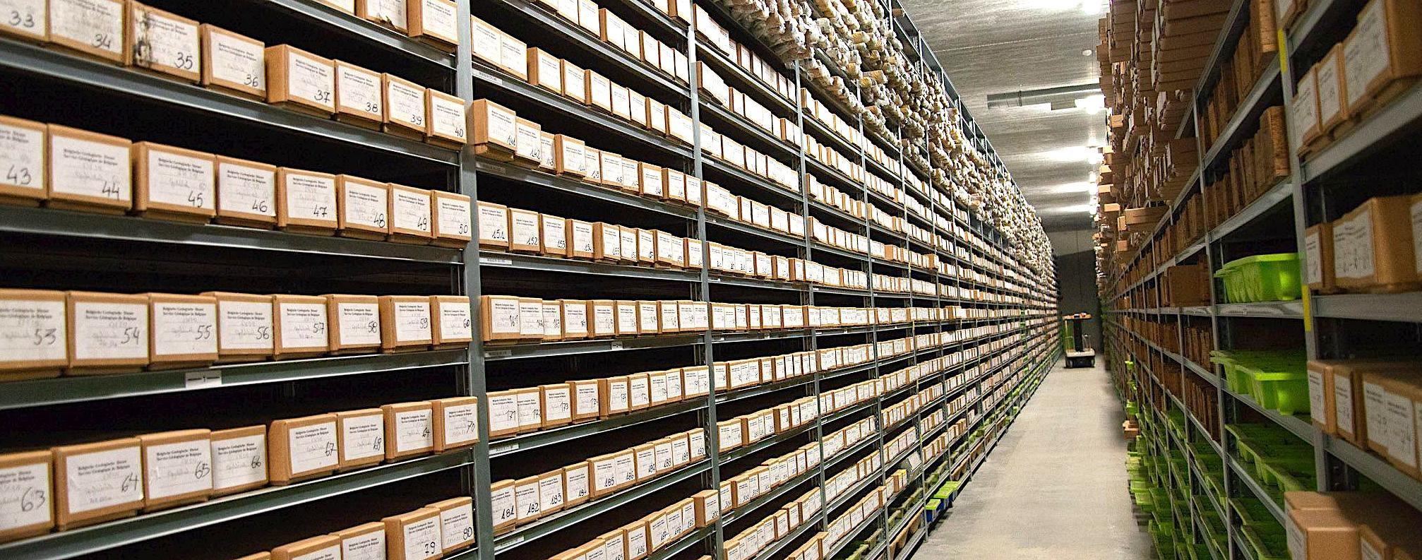 Collection de carottes géologiques belges, conservées à Péronnes-lez-Binche. © IRSNB